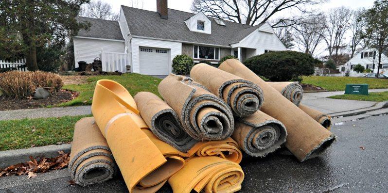 Prevent Carpet Mold After Flood Damage
